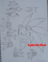 Jet the Hawk sketches by Sophie-The-Skunk