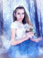 Ice rose by Lada-KR