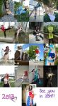 2013- a year in cosplays by shelle-chii