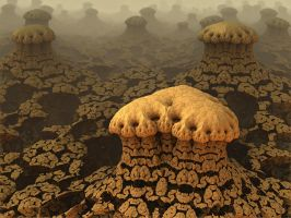 Fungi Formations by AureliusCat