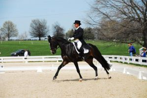 KR09 Dressage 44 by zeeplease