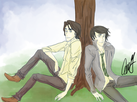 Sirius and Regulus by AniPokie