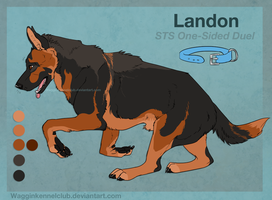 STS Landon by WagginKennelClub