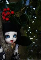 with boughs of holly. by EleanorAnne