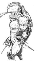 rough raph by channandeller