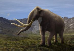 Mammuthus trogontherii by Leogon