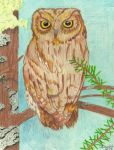 HOOT HOOT by S-Isabel