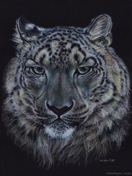 Snow Leopard by MistiqueStudio