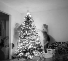 Christmas Time 2007 by l337Jacqui
