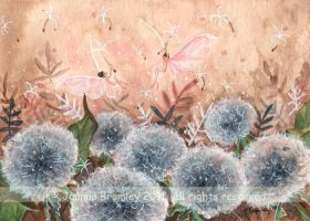 Dandelion Clock Dance by JoannaBromley