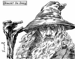 Gandalf the Grey by mlpeters