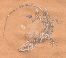 lizard skeleton by Metal-Satan