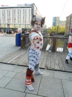 Cats MCM Expo 2013 by Lady-Avalon