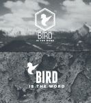 BIRD LTD by Everlongdesign