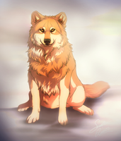 Waiting by TheMysticWolf