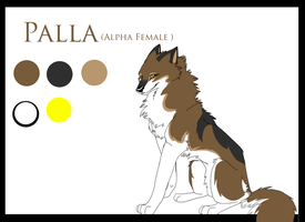 TS COMIC: Palla Ref Sheet by fenderbender368