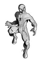 The Amazing Spiderman by Ian-B