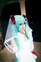 August's Bride - H. Miku: Unfading Memories by farizasuka