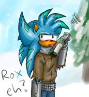 Do you like the winter? by raikoufighter