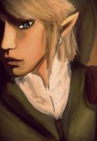 Link Portrait by KaiPackman