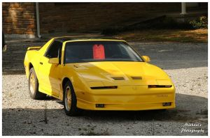 A 1985 Pontiac Trans Am by TheMan268