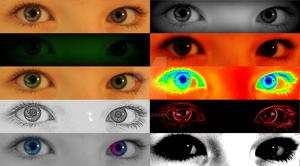 TheEyeCollection by Pemmz