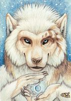 Wolf Pearl ACEO by Goldenwolf