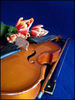 My old violin by Mercilies