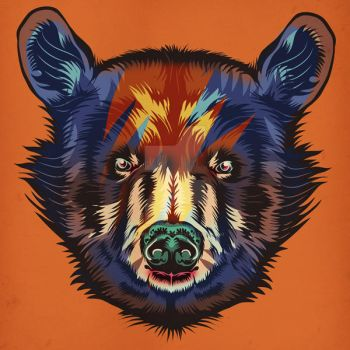 Colorbear1 by MY-METAL-HAND
