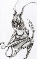 Imp by verreaux