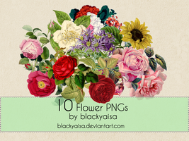 Flower PNGs: 11 by blackyaisa
