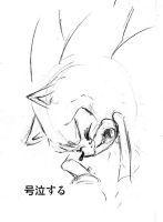 sonic cry 1 wailing by bbpopococo