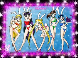 Sailor Moon Bunnies Wallpaper by chaotic-chick