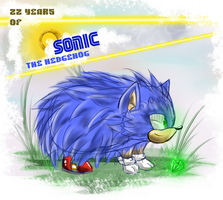 CE: Sonic 22nd birthday by shadowhatesomochao