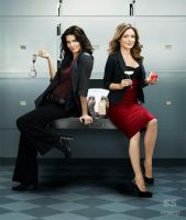 Rizzoli and Isles Wall Paper by Ashski