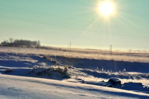 Sun in Winter by realmofheaven