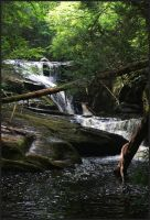 Enders Forest Falls 1 by barcon53