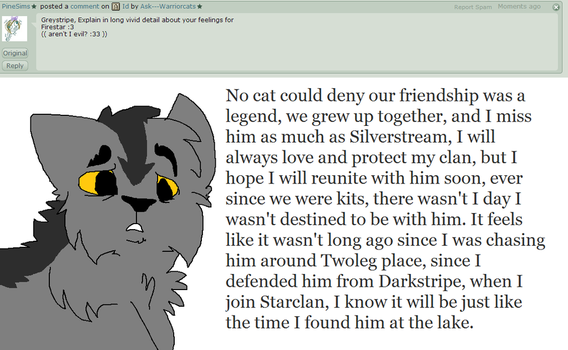 Q1 Graystripe by Ask---Warriorcats