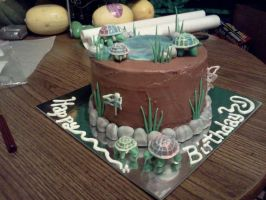hippy turtle and dragonfly cake by JadedFallenOne