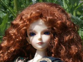 Merida Face by beedoll