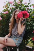 Lane in the rose bushes by Thebritishgangsta
