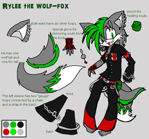 Rylee the Wolf Fox by DraconemIgnis