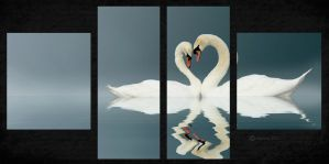 Swans A Swimming(Digital Painting) by chamirra