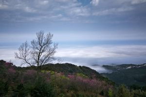 Fog clouds by NorthBlue