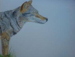 Wolf water colour by Palulukan