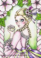 Althaea officinalis by MoonlightPrincess