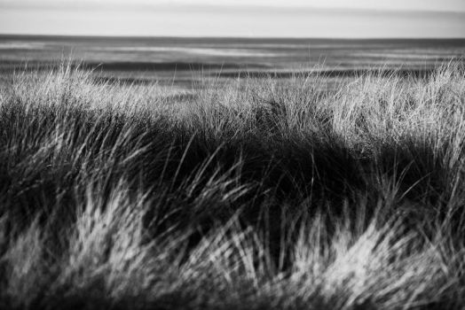 Abstract County Coast by endofthelinefilm