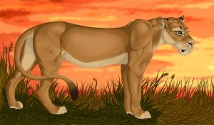 Lioness by Whodovoodoo