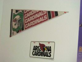 Cardinals Pennant and License Plate by BigMac1212