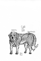 Character Sheet - Cujo by HH-HorrorHigh
